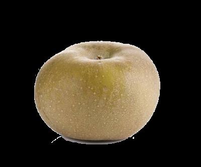 manzana reineta wpp1587595375741